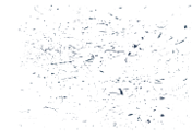 Walkabout Jazz